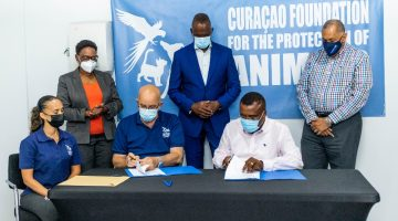 Agreement between the CTB and Curaçao Foundation for the Protection of Animals to address the issue of stray dogs